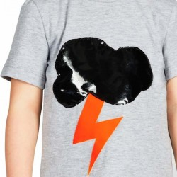 bang bang copenhagen cloudy t-shirt - grey melange