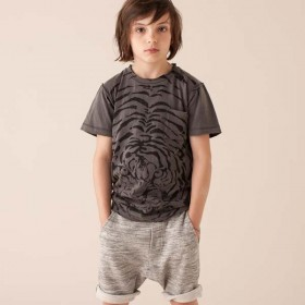 SOFT GALLERY - Ashton Tiger Explosion Tee