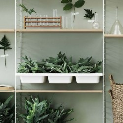 STRING Furniture Bowl Shelf - White