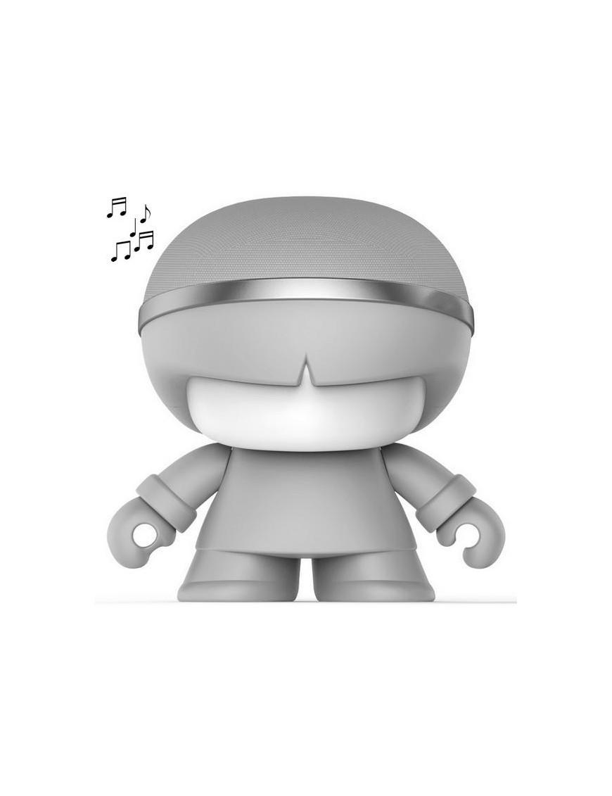Mini xboy gris enceinte