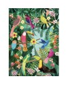 Poster rain forest birds, Petit Monkey