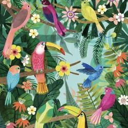"""Affiche """"rain forest birds"""" (50x70cm)"""
