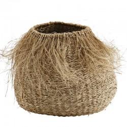 Madam Stoltz seagrass...