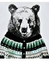 t-shirt garçon ours rolph little paul&joe
